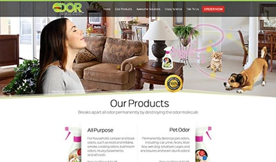 Portfolio PHP WORDPRESS